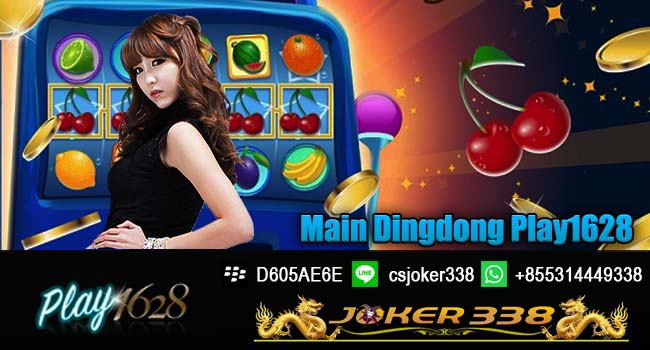 Main Dingdong Play1628